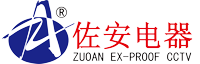 Changzhou Zuoan Electronics Co., Ltd.